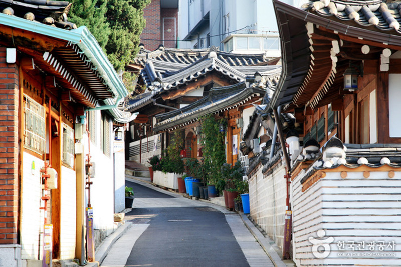 Bukchon Village / Royal  Palace / Museum Tour